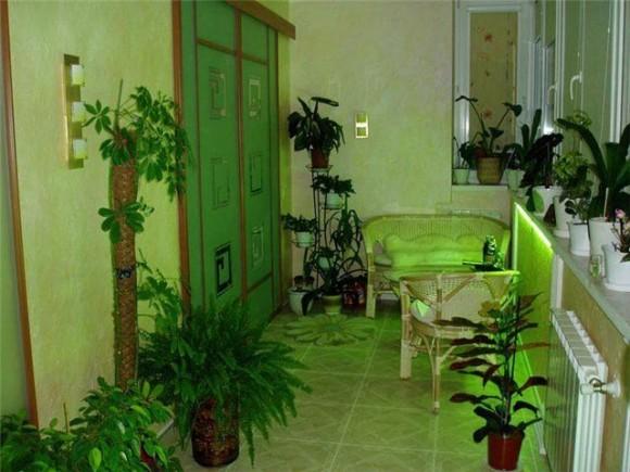 Дизайн балкона с растениями
